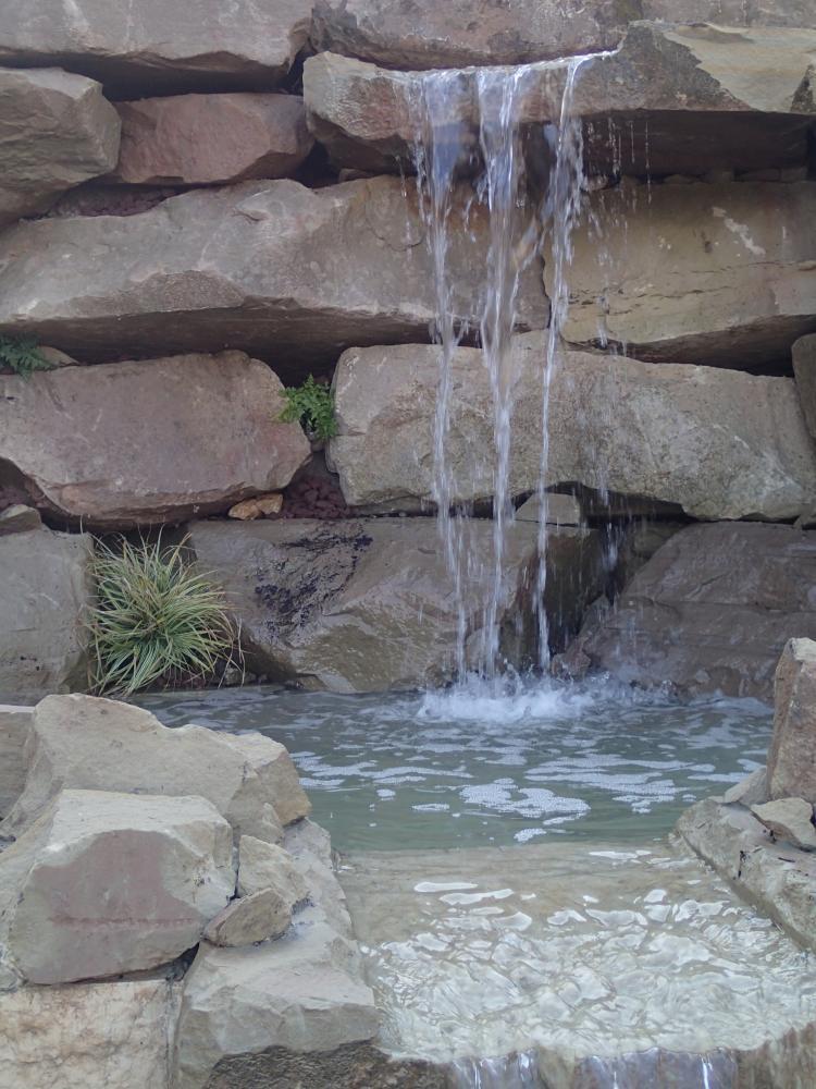 Les actualit s de jardins zen par thierry dehr jardinier for Jardin japonais 78